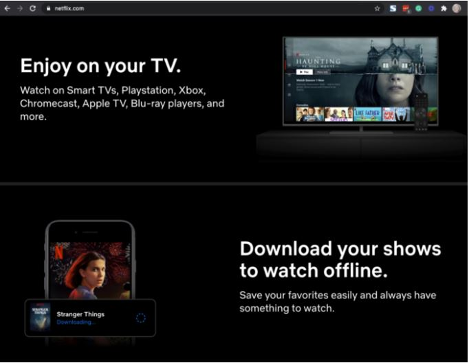 Picture of the Netflix website.